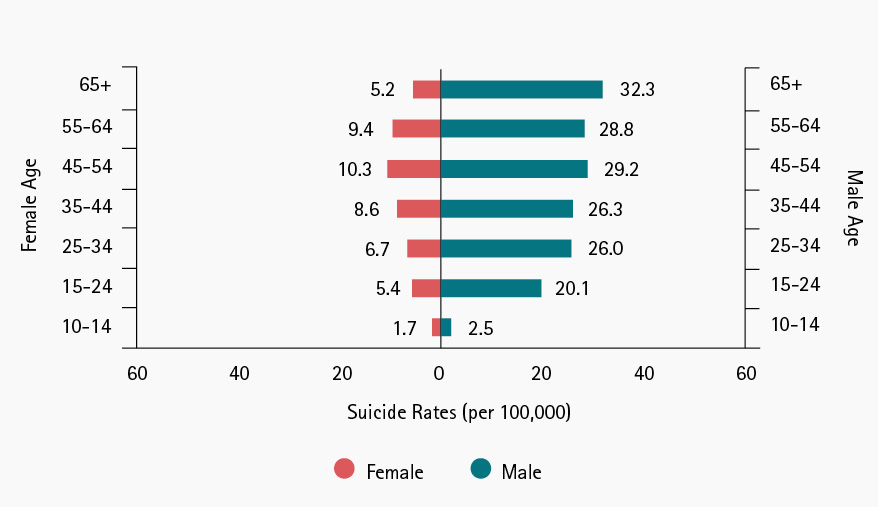 Figure 2. Suicide Rates for Females and Males: 1999-2016