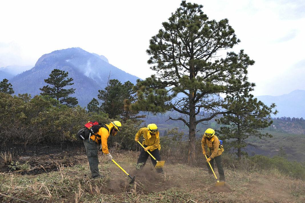 Wildland firefighters cut a firebreak in Colorado