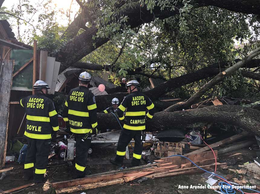 Firefighters with a tree toppled onto a garage