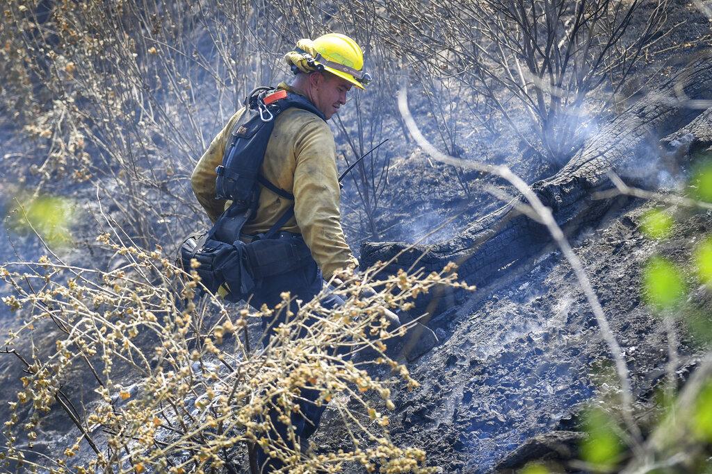 Wildland firefighting in California
