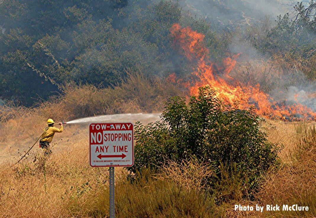 Flames tear through the brush
