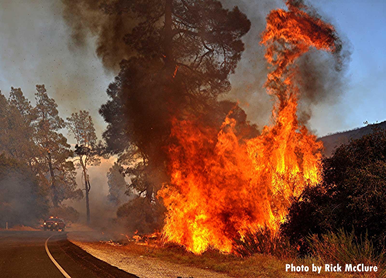 Fire rages near roadside