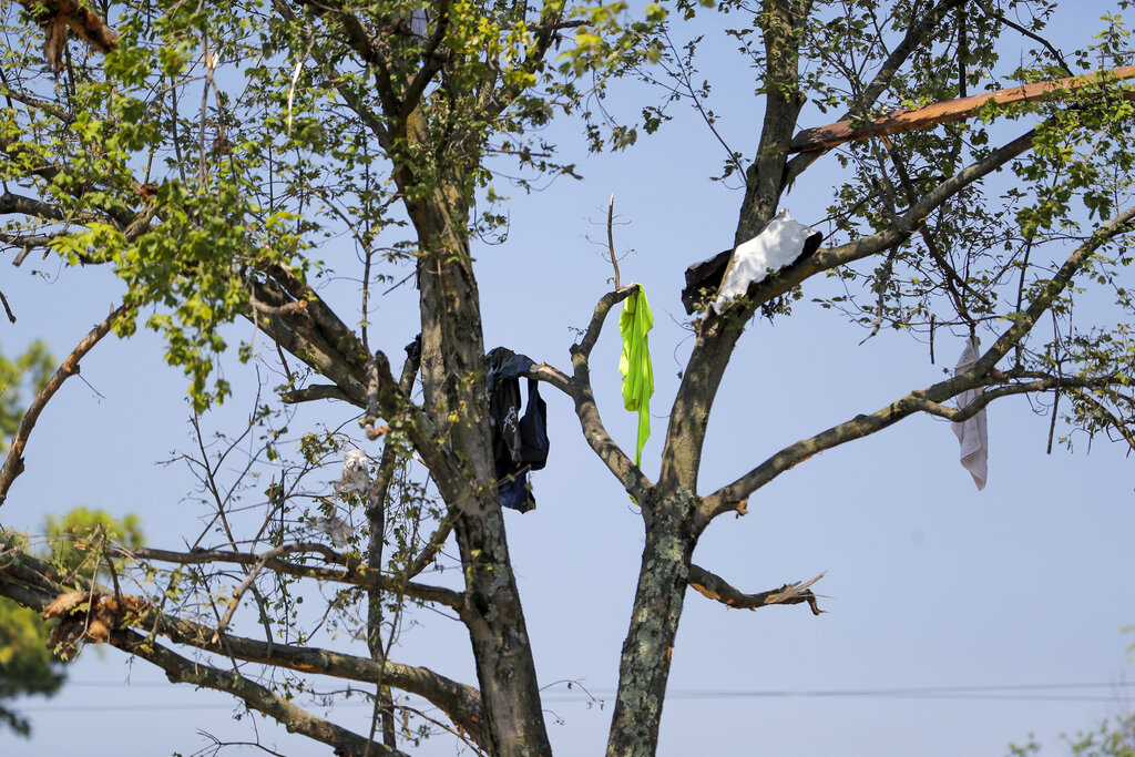 Clothing hangs in a tree in the aftermath of an explosion