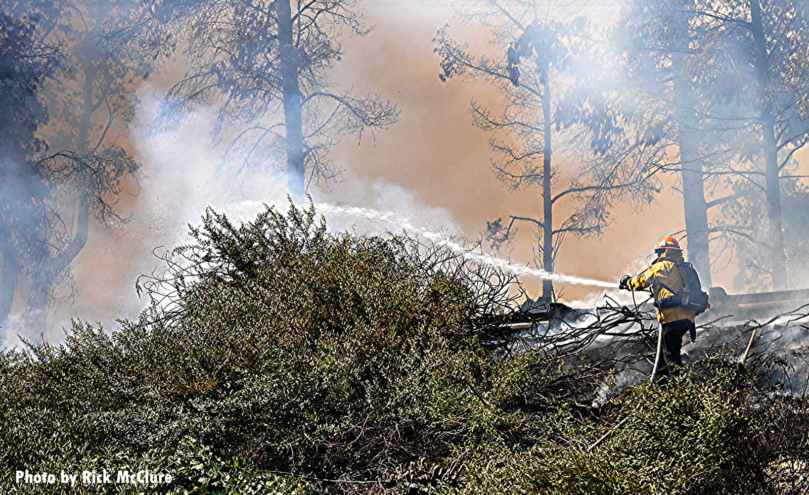 Firefighters apply water at brush fire