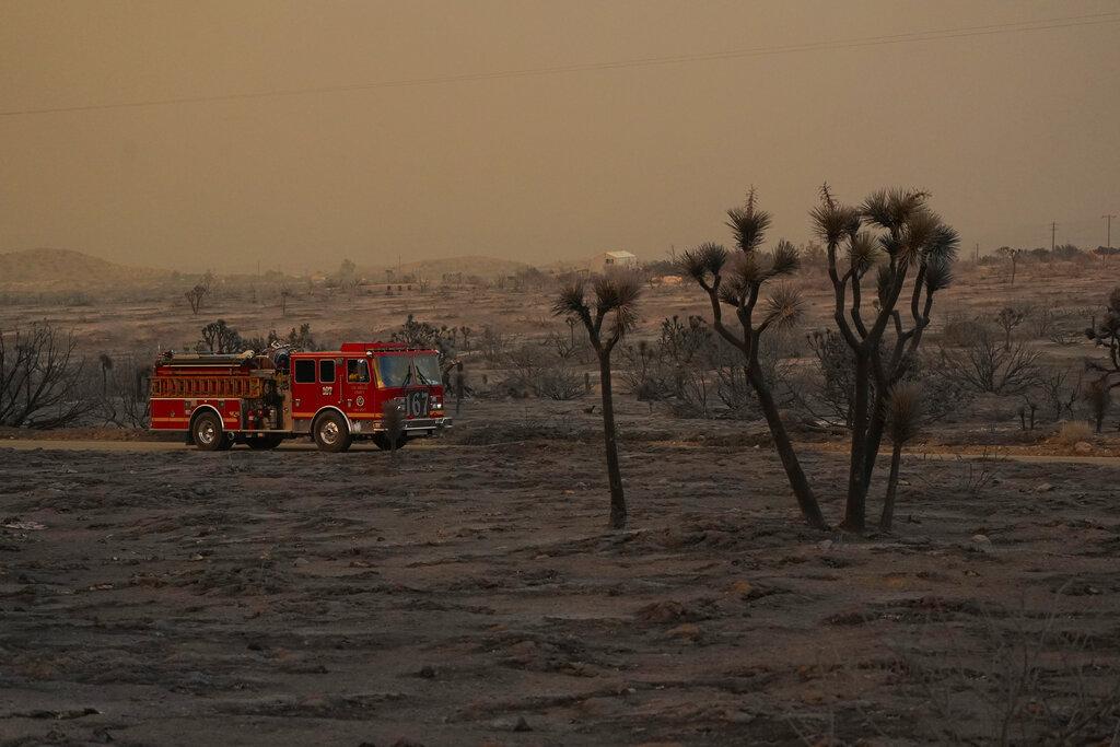 Fire engine amid wildland devastation