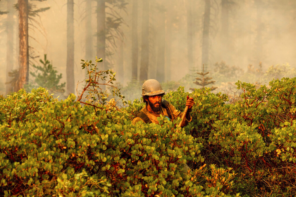 Firefighter Cody Carter battles the North Complex Fire in Plumas National Forest, Calif