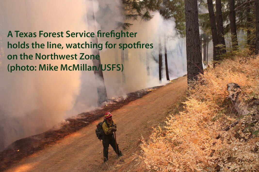 A Texas Forest Service firefighter operates in Shasta-Trinity National Forest