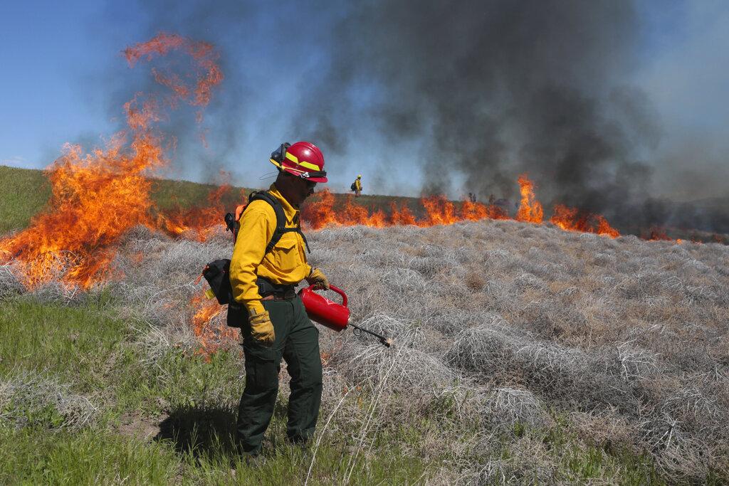 Wildland firefighter in Idaho Halls